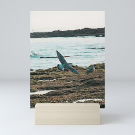 Seagull Flight by the beach Mini Art Print