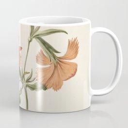 M. de Gijselaar - Yellow Chinese rose (1820) Coffee Mug