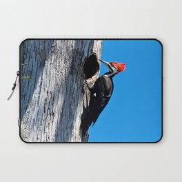 Bayou Bird (Pileated Woodpecker) Laptop Sleeve