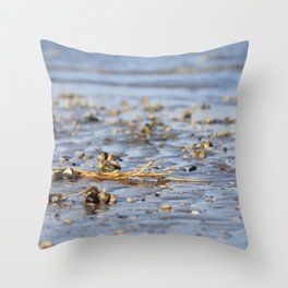 Shells in the sand 3 Throw Pillow