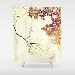 Barren w/Abundance - IA Shower Curtain