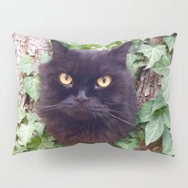 Pomponio Mela cat owl Pillow Sham