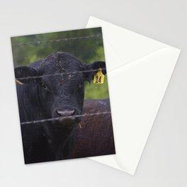 Stephen Stationery Cards