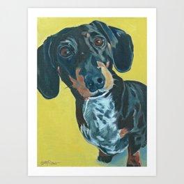 Dachshund Dog Portrait Art Print