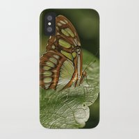 malachite iPhone & iPod Cases featuring Malachite Butterfly by Cindi Ressler Photography