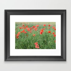 Field of Poppies Framed Art Print