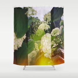 DreiBlumen Shower Curtain
