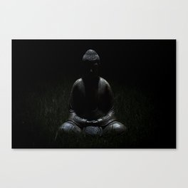 Darkness (2011) Canvas Print