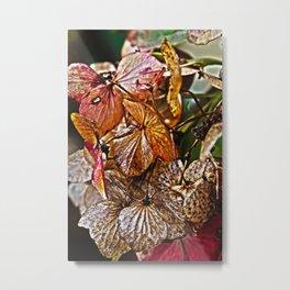 In my Garden Metal Print