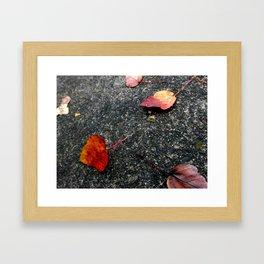 NATURE ART 5 Framed Art Print