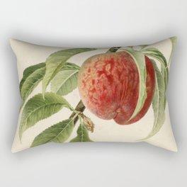 Vintage Illustration of a Peach Branch Rectangular Pillow