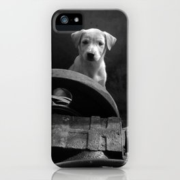 Junkyard stray bw iPhone Case