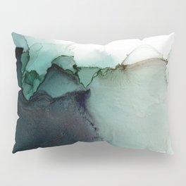 frank Pillow Sham
