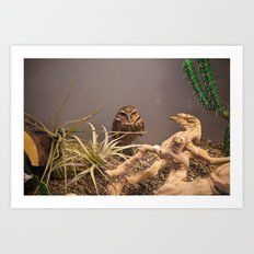 Owlet Art Print