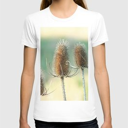 Look out - prickly plant ! T-shirt