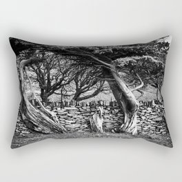 Old wood and stone Rectangular Pillow