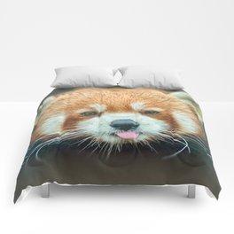 PANDA-RING TO ONE'S TASTE Comforters