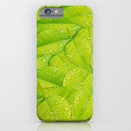 Green leafs pattern  iPhone Case