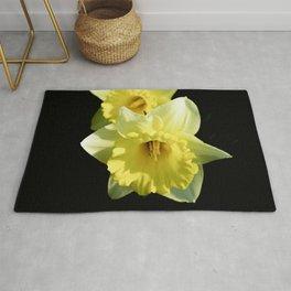 Daffodil flower on a black background Rug