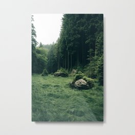 Forest Field - Landscape Photography Metal Print