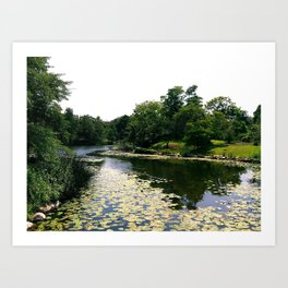 Copenhagen Lillies Art Print