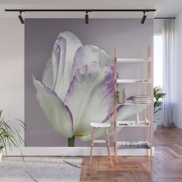 The Tulip Wall Mural