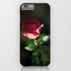 Last Slim Case iPhone 6s