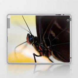 Macro shot of morpho butterfly sitting on orange and eating Laptop & iPad Skin