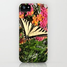 Swallowtail on Lantana iPhone Case