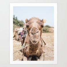 Little kiss anyone?   animal - humor - morocco - travel - print - camel - dromedary - design - joke Art Print