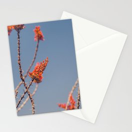 Ocotillo in Bloom Stationery Cards