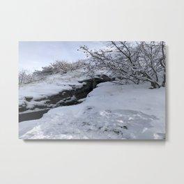 Homestead Crater Metal Print