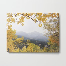 Fall Frame Metal Print