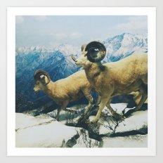 Museum Wildlife Art Print