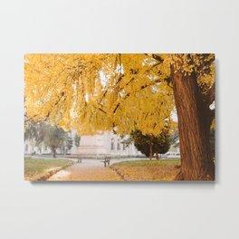 Under the yellow tree Metal Print