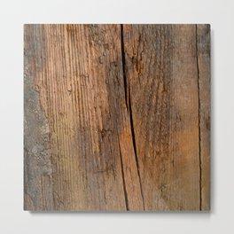 Linden wooden pattern with crack Metal Print