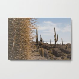 Cactus island Uyuni. Isla Incahuasi, Inkawasi or Inka Wasi.   Metal Print