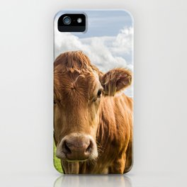 Love at first sight iPhone Case