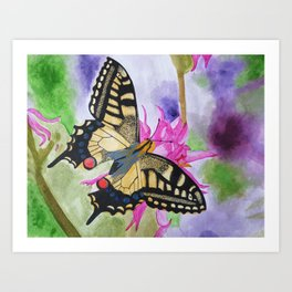 Swallowtail Butterfly Art Print