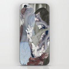 Glaciers iPhone & iPod Skin