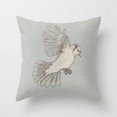 Dynamics of Flight Throw Pillow