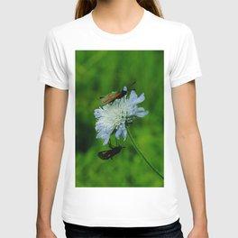 The Lovebugs T-shirt