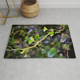 Curlicue Vine with Thorns Rug