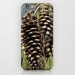 Pinecones  iPhone Case
