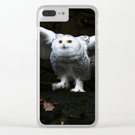 Snowy Owl With Open Wings Clear iPhone Case