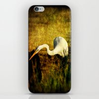 fishing iPhone & iPod Skins featuring Fishing by JMcCool