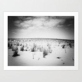 Winter 1 Art Print