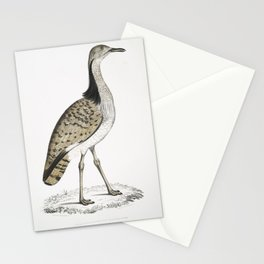 2644 Macqueens Bustard Otis Macqueenii Hamalaya Mountains British Museum 34 Natural size26 Stationery Cards