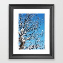 Winter Time Tree Framed Art Print