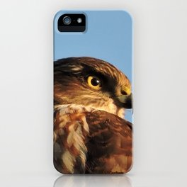 Young Cooper's Hawk iPhone Case